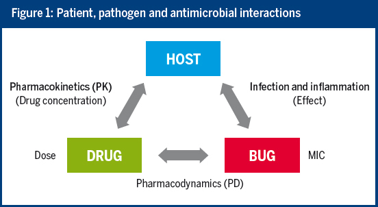 Figure 1: Patient, pathogen and antimicrobial interactions